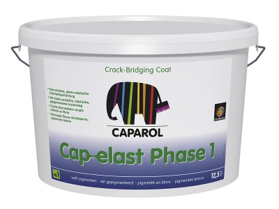 Cap-elast phase 1