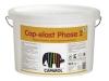 Cap-elast phase 2